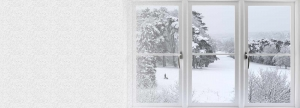 looking out a window at a snowy countryside