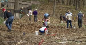 people planting native plants