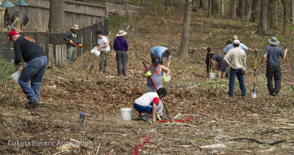 people planting native plants
