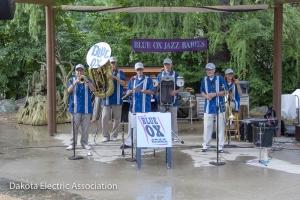 Blue Ox Jazz Babies band