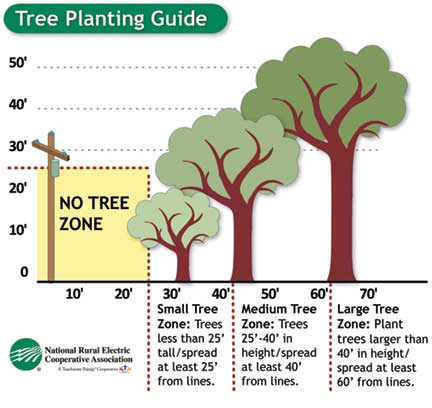 graphic of tree planting