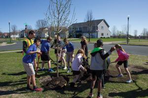 Group of kids planting tree